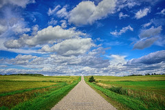 The path of no return.. (Dragan Milovanovic photography) Tags: landscapes scenery summer sunlight quebec canada sherbrooke ruralroad mood draganmilovanovicphotography nature sky sonyslta99ii sonyilca99m2 tamron28300mm lennoxville clouds cloudy cheminspringlennoxville silence symmetry scenic paysage prairie fields rural horizon
