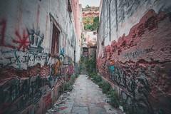 Bando Alley (dogslobber) Tags: green portugal europe graffiti street art travel adventure explore wander