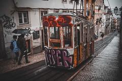 Final Day (dogslobber) Tags: green portugal europe graffiti street art travel adventure explore wander funicular tram trolley