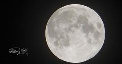 DSC00989-C (Quasimodo(Reduan)) Tags: kitlens moon sonydsc hx60 lowlight sony bestplacetoseeingermany europe deutschland germany munich bavaria regensburg placestoseeingermany topplacesineurope nightphotography astrophotography longexposure exposure wideangle zoom