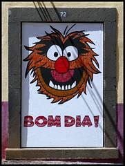 Madeira - Câmara de Lobos (abudulla.saheem) Tags: reciclagemarte recyclingart recyclingkunst latasdebebidas beveragecans getränkedosen art kunst streetart urbanart câmaradelobos regiãoautónomadamadeira madère portugal panasonic lumix dmctz101 abudullasaheem