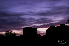 _MG_3059 - e t (Daniel Jiménez Fotógrafo) Tags: landscape paisaje atardecer getdark sun sunset lateafternoon building edificio cloud nube sky cielo colors purple yellow red pink dark darkness madrid spain españa danifotografia danieljimenezfotowixcomportfolio danieljg