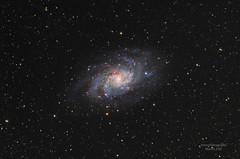 M33 / Triangulum Galaxy (eibl.mah) Tags: astrofotografie m33 apod zwoasi weltall galaxie williamoptics