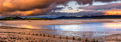 12th September 2019 (Rob Sutherland) Tags: canal foot old dock remains wooden swan bird swimming water sea estuary leven ulverston cumbria cumbrian industry industrial archaeology train viaduct cartmel peninsula hill lakes lakeland lakedistrict south uk england northwest north northern sunset sky cloud fire warm warmth scene scenic panorama panoramic view vista morecambe bay river britain british