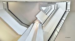 Hamburg stairs (petra.foto busy busy busy) Tags: fotopetra canon eosrp treppe treppenhaus treppengeländer vonunten stairs hamburg germany kontorhaus gebäude innen architektur
