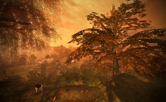 Fall Is In The Air (Jamee Sandalwood Photography) Tags: secondlife shadows outdoors outside outsdie orange fall arts artist pixel photography photos landscape autumn harvest