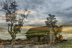 Once It Was Home Dreamscape Series (Ann Kunz) Tags: composite nature house trees landscape dreamscape rural countryside