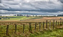 Paradis / Rural / Paridise (1-3) (Donald Plourde) Tags: paradis rural paridise champs fields clôture fence nuages clouds ferme farm série