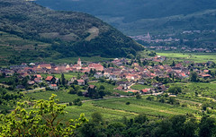 Danube River Valley (t.beckey) Tags: danube river valley austria scenic village landscape mountains view castleruins richardthelionheart castle vineyard