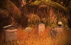 Bee Hives (Jamee Sandalwood Photography) Tags: secondlife shadows outdoors outside outsdie orange fall arts artist pixel photography photos landscape autumn harvest