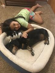Carly's last photo with Iris (MJK&C-T) Tags: carly iris max dachshund