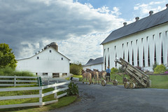 Amish tobacco farm (Notkalvin) Tags: amish pennsylvania lititz lancastercounty outdoors farm barn tobacco horses horsedrawn farmequipment notkalvin mikekline noelectricity whitefence culture cultural