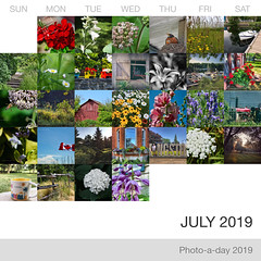 July 2019 at a glance (Basildon Kitchens) Tags: princeedwardcounty summer collage