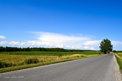 Aug 4 country roads (Basildon Kitchens) Tags: princeedwardcounty summer countryroads notraffic bluesky