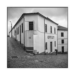 offley • gaia, portugal • 2019 (lem's) Tags: offley porto woman umbrella femme parapluie street rue vila nova de gaia portugal rolleiflex t
