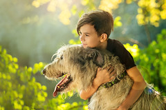 friends (Irena Rihova) Tags: wolfhound dog friends pet people animal big boy person man young teenage teenager bokeh light