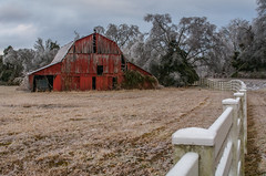 Ole red (Sarah Rausch) Tags: hff fencefriday barn red abandoned old nikon 2015 oldie oldiebutgoodie kitlens 80 tennesseebackroads winter 7100 country rural tennessee memories