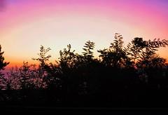 Otro bello amanecer (eitb.eus) Tags: eitbcom 16599 g1 tiemponaturaleza tiempon2019 amanecer gipuzkoa hondarribia josemariavega
