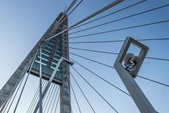 Megyeri Híd (kishontiartwork) Tags: bridge budapest capital canon canon80d canonllens wide megyeribridge canon2470 lines 2018 architecture construction