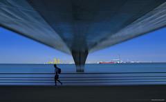 Una nota bajo el puente (ricardocarmonafdez) Tags: cádiz puerto harbour puente bridge azul blue color cielo sky effect edition processing imaginación people movement nikon d850 ricardocarmonafdez ricardojcf