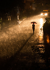 I wanna get wet (sharmi_diya06) Tags: street streetphotography people portrait walk rain nightphotography weather light nature