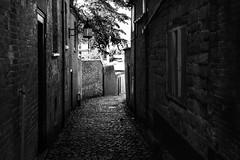 Urban (lightersideofdark) Tags: blackwhite street streetphotography dark outside outdoors cloud sky brickwall brick wall architecture urban old cobbles windows tree contrast composition exposure