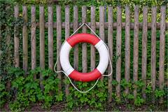 Happy Fenced Friday! (Janos Kertesz) Tags: lifebuoy rescue ring red safety emergency help security life object sea safe float fence zaun bavaria bayern wesling