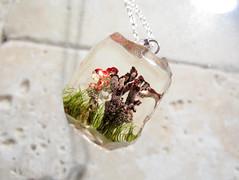 Cladonia pyxidata and C. bellidifolia necklace (chaerea) Tags: cladonia lichen apothecia mycology fungi algae jewelry naturejewelry lichenjewellery lichenjewelry fungijewelry necklace pendant