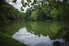 Little green shelter in Eden (gergely.t.springer) Tags: nikon d3500 shelter green peaceful martonvásár hungary castlepark park bridge lake magyarország