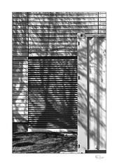 Lineal #4 (radspix) Tags: minolta 7000i 3570mm af zoom f4 kentmere 100 pmk pyro