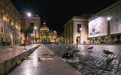 Vatican (Ian McClure) Tags: rome italy ricoh gr seagulls vatican handheld lowlight