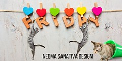 Iz Friyay! Much joy, very happerz! OMG Feathers!!! #FridayMorning #FridayFeeling #FridayMotivation #FridayThoughts https://t.co/t9fklnWCtk (Neoma Sanativa Design) Tags: twitter photooftheday inspiration motivation love peace quotes
