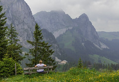 Seat with a View (ivanstevensphotography) Tags: mountains trees travel green grass seat bench buildings people landscape nature sky clouds flowers canon80d scenery