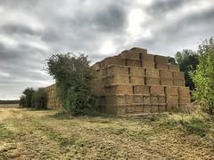 Giant haystack.... (mark.griffin52) Tags: england buckinghamshire cheddington trees countryside farm haystack