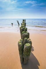 Groynes (alowlandr) Tags: schoorl northholland netherlands nature sand sky beach coast landscape groyne breakwater water sea posts coastal seaside outdoor summer wood beautiful nopeople
