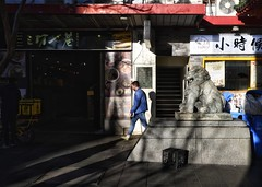 afternoon light (gro57074@bigpond.net.au) Tags: afternoonlight lightandshade shadows shade light stphotographia f40 2470mmf28 tamron d850 nikon dixonstreet cbd sydney haymarket chinatown september2019 guyclift clickx pbwa colour color candid street streetphotography