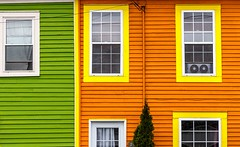 Next Door (Karen_Chappell) Tags: green orange yellow white windows building house home stjohns jellybeanrow rowhouse architecture buildings trim wood wooden paint painted clapboard lines geometry geometric city urban downtown canada canonef24105mmf4lisusm avalonpeninsula atlanticcanada eastcoast newfoundland nfld color colour colours colors colourful multicoloured