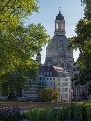 Frauenkirche (inmyeyespictures) Tags: dresden frauenkirche park sachsen saxony church kirche altstadt city gfx50s gf110f2