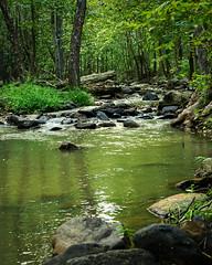 Moorman River (GreyGryphonPhoto) Tags: river rural blueridgemountains summer albemarle nikond7200 charlottesville virginia