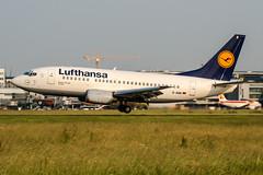 D-ABII (PlanePixNase) Tags: eddl dus dusseldorf düsseldorf airport aircraft planespotting lohhausen lufthansa 737 737500 b735 boeing