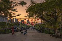 Mid-Autumn Festival 2019 @ Gardens By The Bay (gintks) Tags: gintaygintks singapore singaporetourismboard singapur midautumnfestival gardensbythebay gbtb nightscape colour lighting vibrant tree sgbicentennial light vivd lantern brilliant celebration giantlanterns sunset sunsetglow