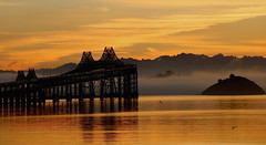 Like glass (Robin Wechsler) Tags: water bridge morning dawn sanfranciscobay architecture sunrise weather