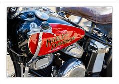 Hand-change Harley (G. Postlethwaite esq.) Tags: dof derbyshire harleydavidson heagewindmill unlimitedphotos bokeh classicbikes depth motorbike motorcycle photoborder selectivefocus