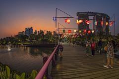 Mid-Autumn Festival 2019 @ Gardens By The Bay, Singapore (gintks) Tags: gintaygintks singapore singaporetourismboard singapur midautumnfestival gardensbythebay gbtb nightscape colour lighting vibrant tree sgbicentennial light vivd lantern brilliant celebration giantlanterns sunset sunsetglow