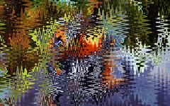 Lake, Trees, Sunset, Peace (Zoom Lens) Tags: abstract surreal manipulated lake trees sunset peace