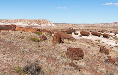 Without Carbon (Ron Drew) Tags: nikon d850 nationapark usa arizona autumn petrified petrifiedforest painteddesert desert petrifiedwood soutwest outdoors landscape plateau erosion