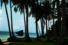 Cast Away (Wilson Island) (3MY MAIK3) Tags: coconuttree sea island castaway rock