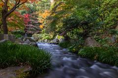 Pose longue (stephanexposeinjapan) Tags: japon japan asia asie stephanexpose canon 600d 1635mm osaka nature eau water cascade waterfall