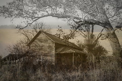 Abandoned  Dreamscape Series (Ann Kunz) Tags: composite abandoned house tree rural countryside northcarolina landscape nature abstract surreal ngysaex