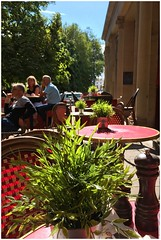 Cafe life... (Orchids love rainwater) Tags: cafe sunshine cheltenham